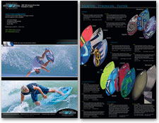 Wave Zone Skimboards Brochure and Website 2010